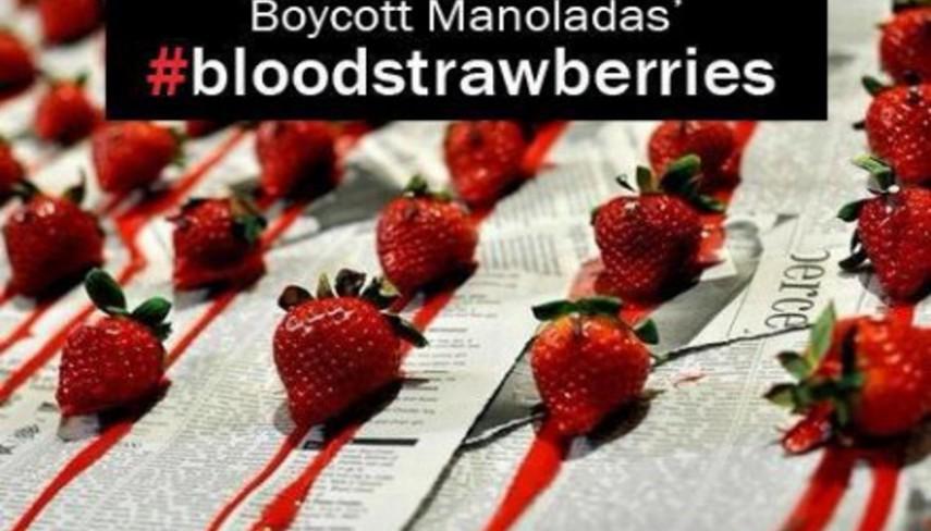 manolada_boycott