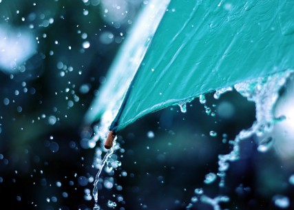 free_rain_umbrella