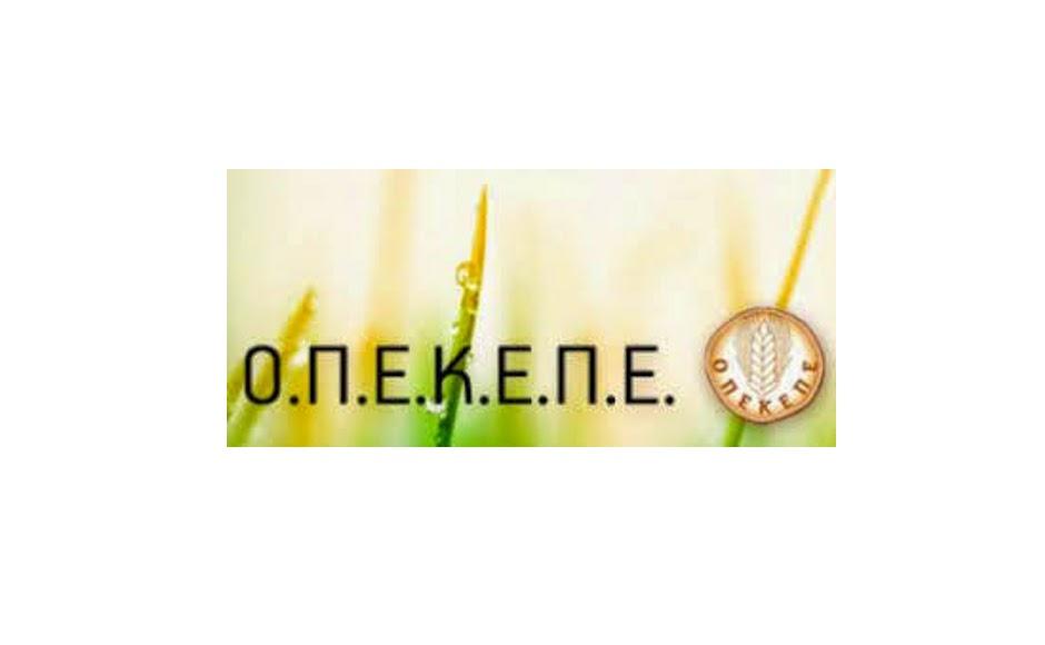 logo_opekepe